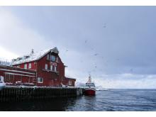 Røst, Lofoten, Norway