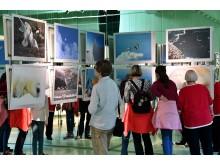Ausstellung-Rosing_Foto_Joachim_Kloock_03