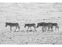 Alphaddicted_Roadtrip Namibia_05