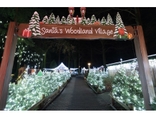 Santa's Woodland Village (photo credit Dynamic Aperture).jpg
