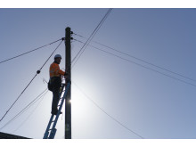 Engineer up pole (6)