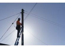Engineer up pole (6)