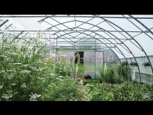 Elmia Garden Trends I Happy Hybrid