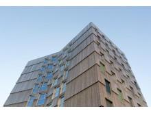 Moholt 50 | 50 Studentenwohnheim in Trondheim - Kebony Fassade