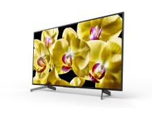 55 XG80 4K HDR TV (1)