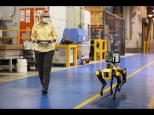Hund roboter 2020 Fluffy