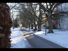 Stadsträdgården_12feb2021.JPG
