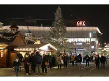 6. Weihnachtsbaum in Kassel