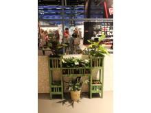 Gröna svenskodlade krukväxter och hortensior hos Oddbirds på Formex