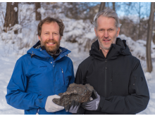 Meteoritens upphittare