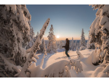 Tidenes jul i Trysil