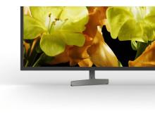 65 XG81 4K HDR TV (2)