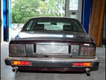 Jaguar [3 - back]