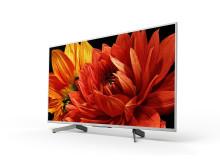49 XG83 4K HDR TV (1)