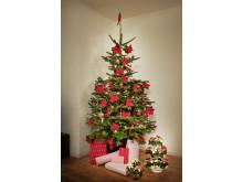 Julgran dekorerad med julstjärnor