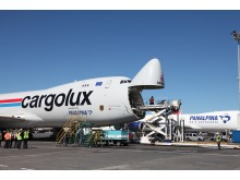 Cargolux and Panalpina side by side