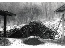 Kolhög utanför paret Kraitz hem och ateljé, 1996