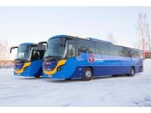 Bussar_Umeå