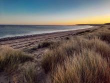 Holkham Beach 4 - Sony Xperia 5 II