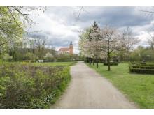 Schlosspark Buckow