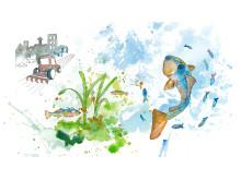 Ny webbplats samlar all information om hav och vatten