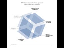 Robust Organization Press Graphic 1