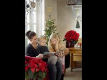 Julstjärna 2020 mysig jul