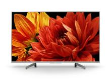 49 XG83 4K HDR TV (2)