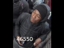 46550