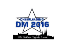 Cheerleading DM 2016