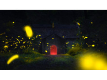Fireflies Flying