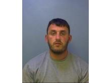 Sentenced - Lee Healy