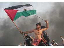 © Mustafa Hassona, Palestine, 3rd Place, Professional competition, Documentary, 2019 Sony World Photography Awards