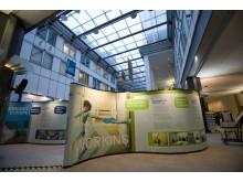 Eurofound at the European Parliament