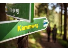 Kammweg Erzgebirge- Vogtland