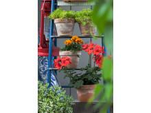 Trädgårdsflärd 4