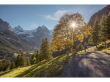 Rosenlaui(c)SchweizTourismus_JanGeerk