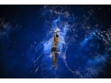 ® Zuorong Li, China, Entry, Open, Motion, 2017 Sony World Photography Awards