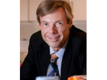 Robert Brummer, professor