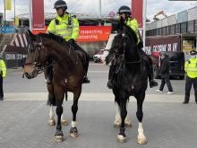 Stadium - Mounted officers.jpg