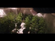 Plants seized [2]