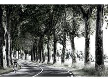 Peugeot cyklar vidare i Sthlm Bike