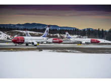 Tre Norwegian-fly i vinterlandskap