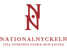 Nationalnyckeln NN Logo 2rad_centr_CMYK_rod