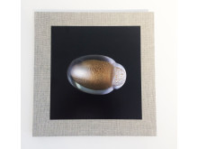 Boken In this light, utgiven av Galleri Glas