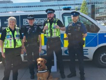 Engagement activity in Milton Keynes with passive drugs dog