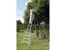 A Japanese tripod ladder has won the 2018 Elmia Garden Award.