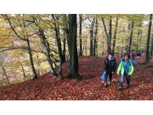 Stiftelsen Skånska Landskaps nya skolprojekt Vi möts i skogen.