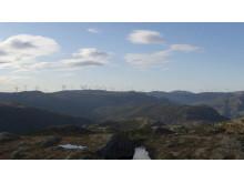 MND_ Roan vp fra Skomakerfjellet visualisering 2017