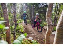 Cykla i Åre